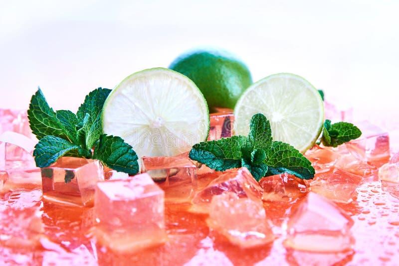 柑橘水果:石灰用薄菏和冰块在珊瑚背景 新鲜的夏天果子 库存照片