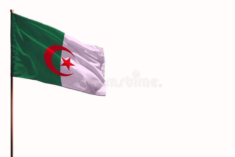 振翼的阿尔及利亚隔绝了在白色背景,与空间的大模型的旗子您的内容的 库存例证