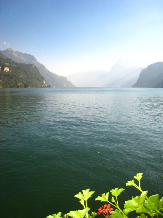 有一个鲜绿色蓝色瑞士湖的美妙全景有积雪的山和花的 库存照片