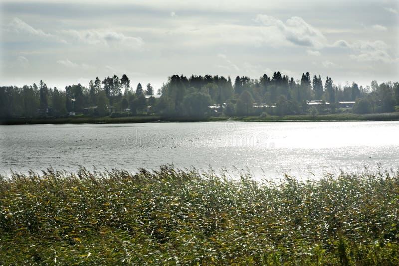 有一棵草的黑暗的闪耀的湖在岸在与太阳由后照的云彩的一天空蔚蓝下在夏天在芬兰 库存图片