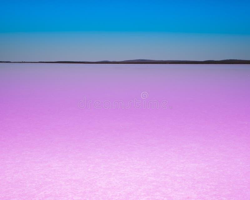 有天空蔚蓝的桃红色湖 图库摄影