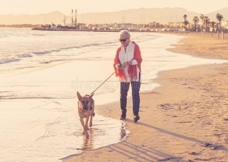 有她的走在海滩的德国shepard狗的愉快的可爱的资深妇女在秋天日落 库存照片