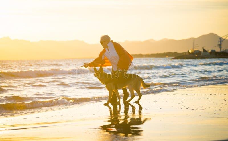 有她的走在海滩的德国shepard狗的愉快的可爱的资深妇女在秋天日落 图库摄影