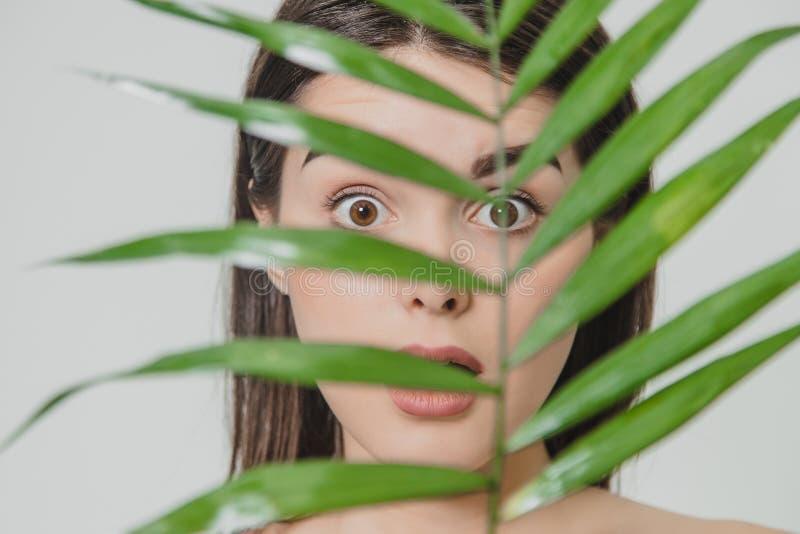 有完善的皮肤的美丽少妇和自然组成 与绿色叶子的青少年的模型 温泉、skincare和健康 免版税库存图片