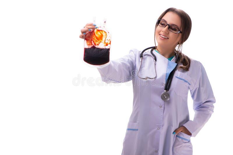 有在白色隔绝的血液袋子的年轻女性医生 图库摄影