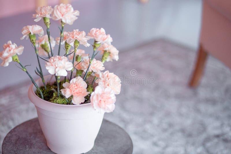 有桃红色花的花瓶在桌上 免版税库存照片