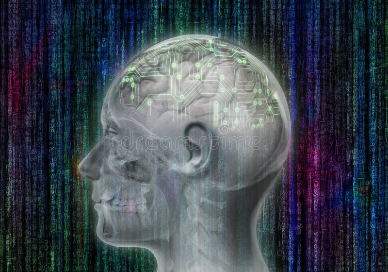 有数字脑子的人头 免版税库存照片