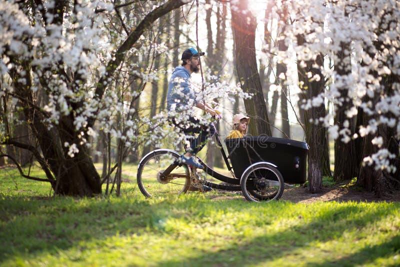 有的父亲和的女儿与货物自行车的乘驾 图库摄影