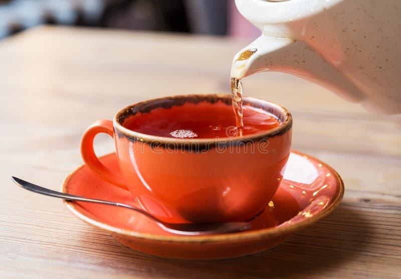 有热的茶罐的茶杯 库存照片