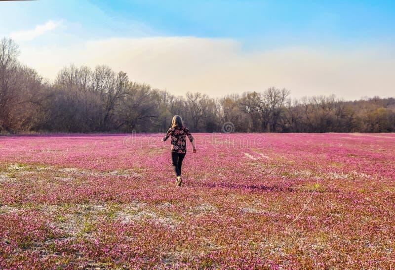 有运行横跨桃红色和紫色花的领域的俏丽的开花的衬衣的妇女在早期的春天-回到照相机 免版税库存照片