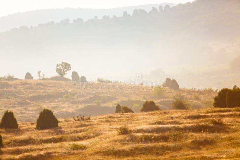 有薄雾的风景概念 在山的平静的区域 未触动过的本质 库存图片