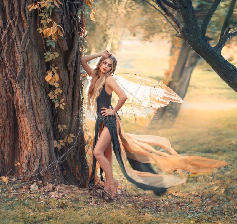 有金发姿势的柔和的女孩照相机的在森林,美妙的童话里神仙与透明翼以美国钞票 免版税库存照片