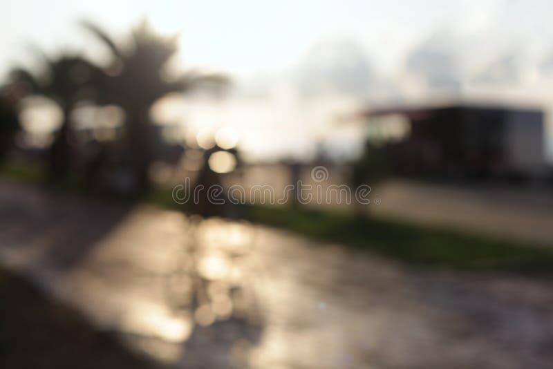 抽象热带沿海岸区光迷离眨眼睛背景 软绵绵地集中 库存图片