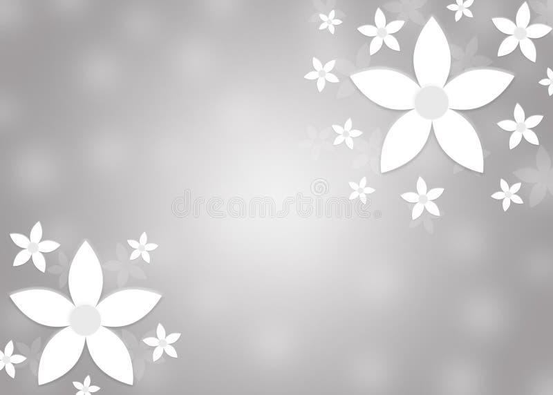 抽象白花在模糊的灰色背景中 库存例证
