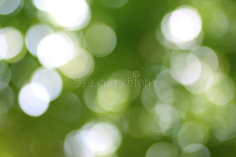 抽象自然绿色bokeh背景 库存图片