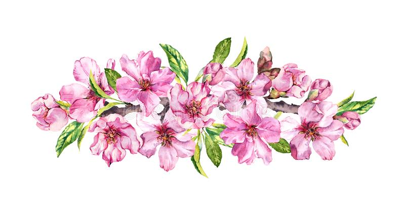 春天开花的构成 桃子,杏仁,李子,樱桃,佐仓花,桃红色苹果开花 柔和的水彩 库存例证