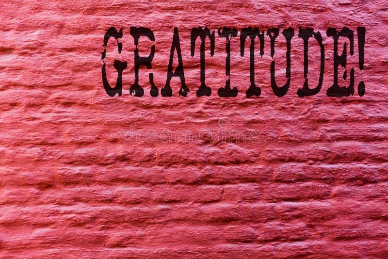 显示谢意的概念性手文字 企业照片文本质量是感激的欣赏感谢承认 库存照片