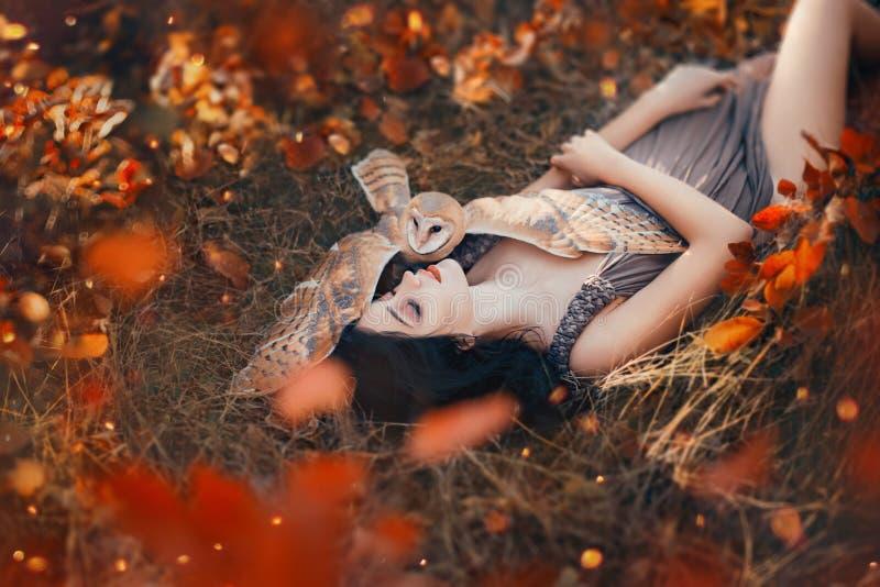 明亮的秋天艺术照片,女神休息在秋天橙色森林里在逗人喜爱的小猫头鹰,有黑发的女孩的保护下 免版税库存照片