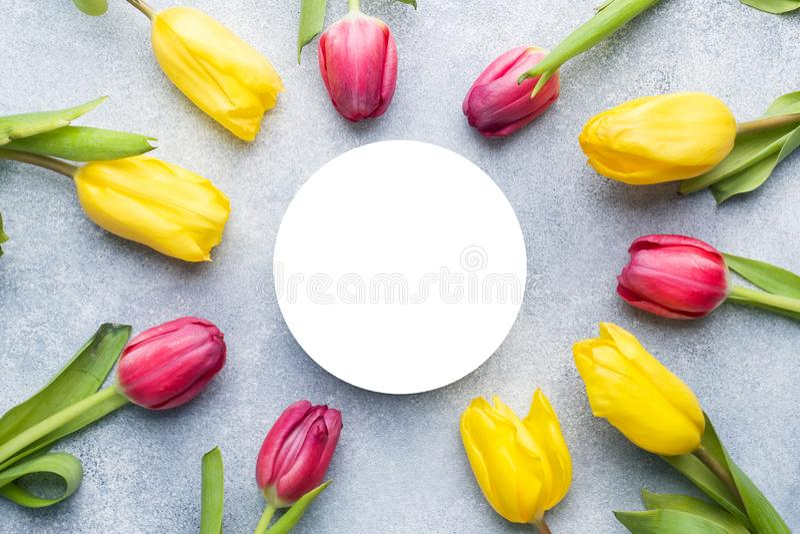明亮的郁金香黄色和桃红色在文本的中心空间 图库摄影