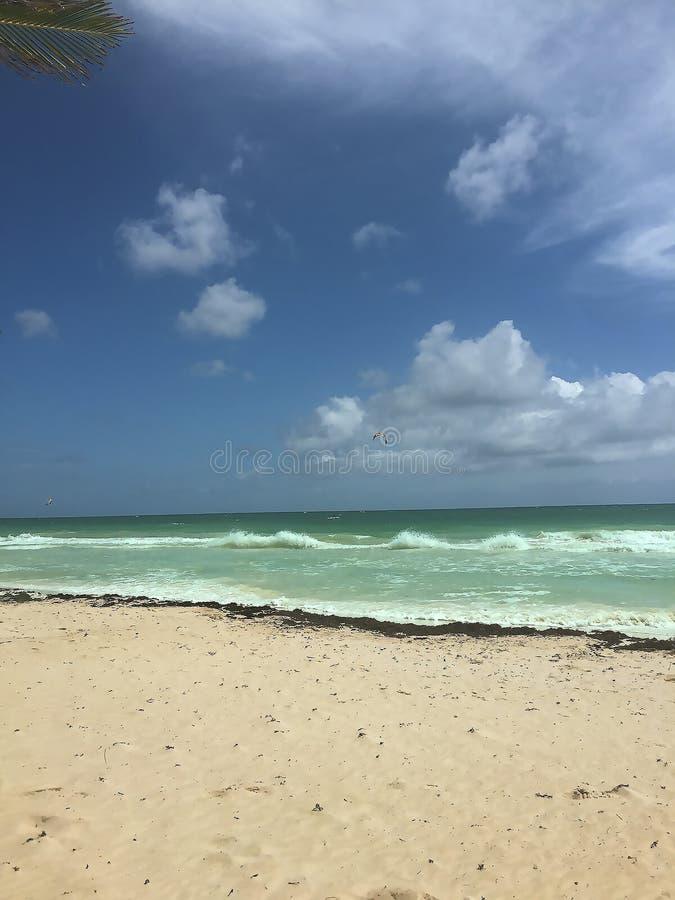 旅途通过墨西哥湾 图库摄影