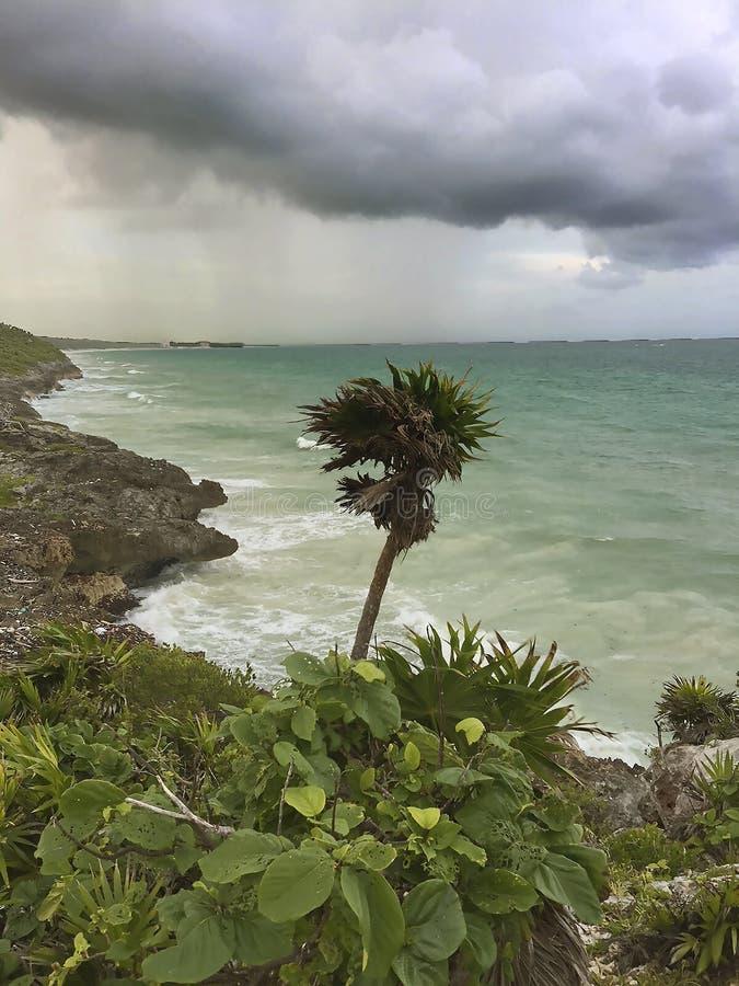 旅途通过墨西哥湾 免版税图库摄影