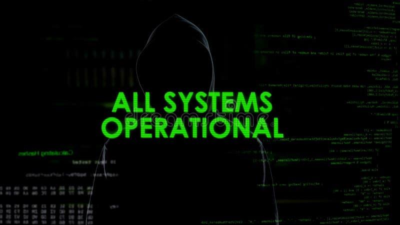 操作所有的系统,成功的乱砍的尝试,匿名cyberattack 免版税库存照片