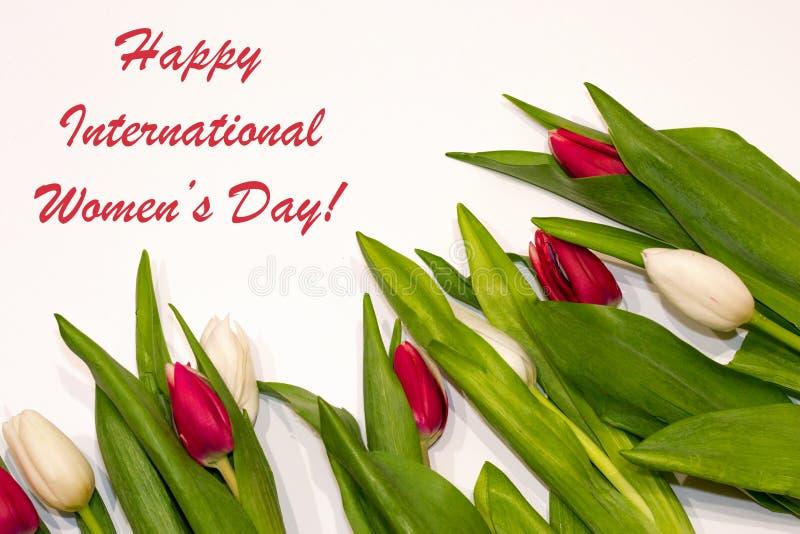 愉快的国际women';s与红色和白色郁金香花框架的天背景 妇女的最佳的礼物在度假 春天 库存照片