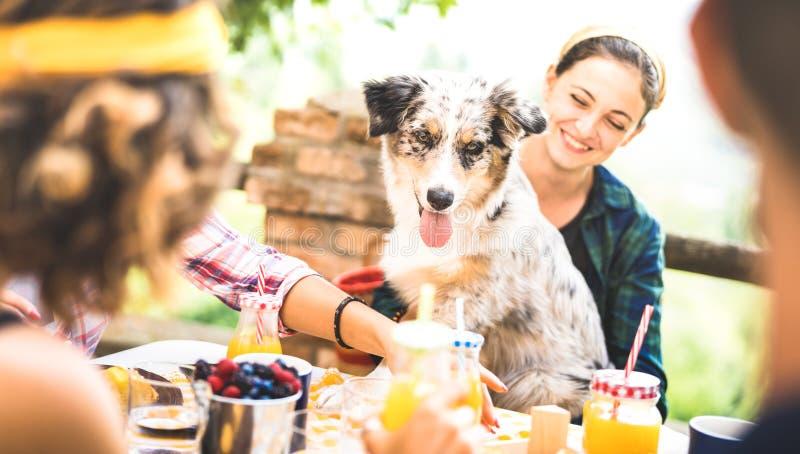 愉快的朋友吃健康pic nic早餐在乡下与获得逗人喜爱的狗的农厂家的年轻人millennials乐趣 免版税库存图片