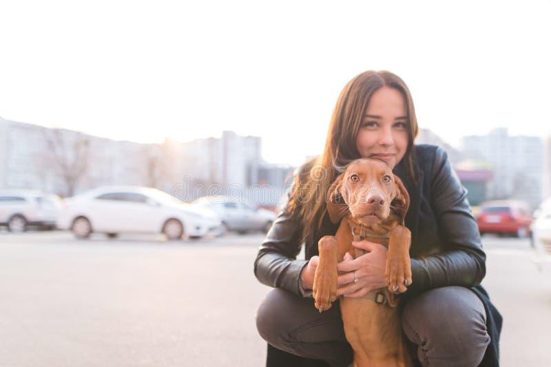 愉快的摆在以城市风景为背景的女孩和幼小狗在日落 狗所有者和小狗画象  库存图片