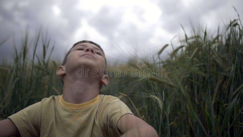 愉快的男孩在麦田和神色坐在多雨美丽的天空 免版税库存照片