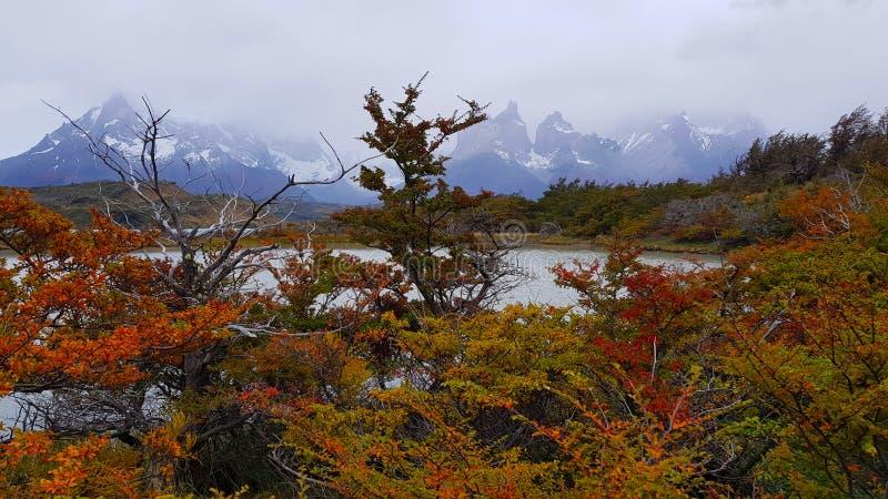 托里斯在云彩下的del潘恩,智利秋天风景  免版税库存照片