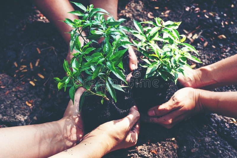 手拿着干旱的土壤和破裂的地面或死的土壤的团队工作和家庭年幼植物在自然公园 库存图片