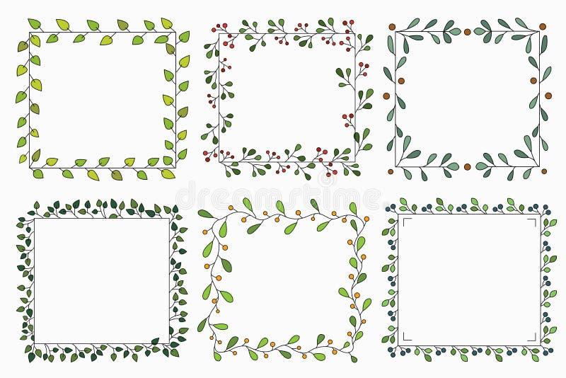 手拉的套与绿色叶子的另外花卉传染媒介花圈,草本森林,逗人喜爱的方形的土气框架 免版税库存图片