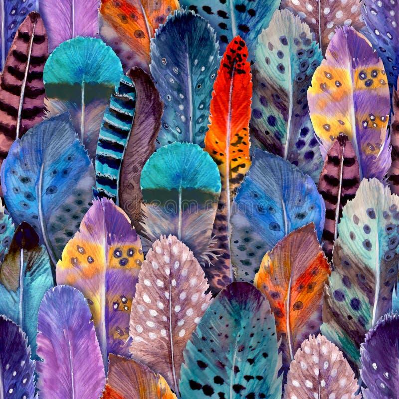 手拉的水彩鸟羽毛充满活力的明亮的无缝的样式例证 库存例证