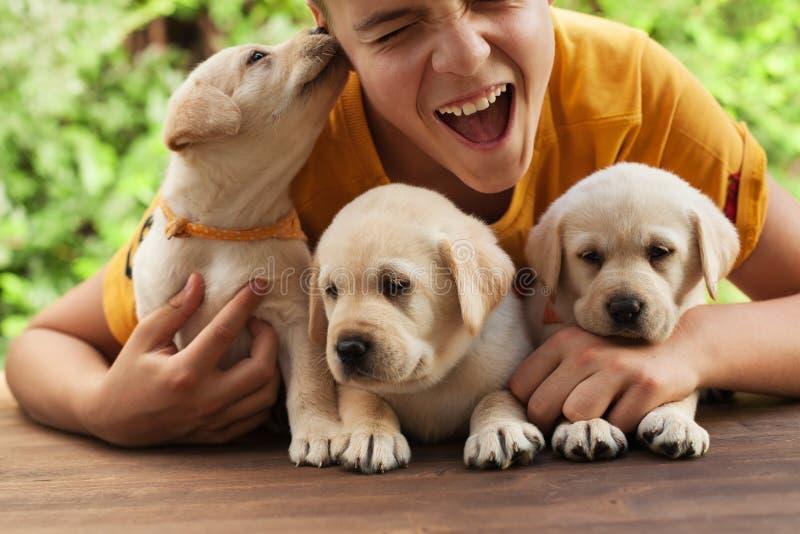 拿着他逗人喜爱的拉布拉多小狗的少年男孩,获得乐趣和享受他们的公司 免版税库存照片
