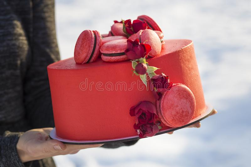 拿着有可口美味的自创红色蛋糕的女性手板材与用在轻的被弄脏的拷贝空间的花装饰的macarons 库存照片