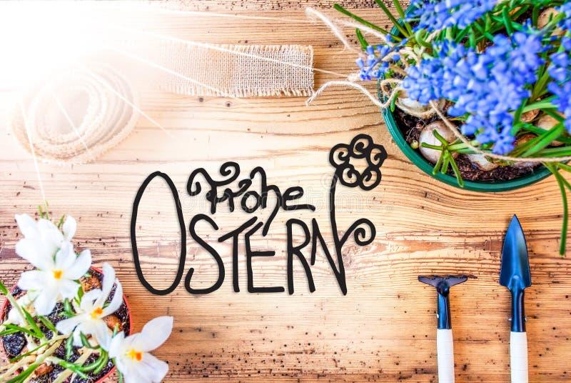 晴朗的春天花,书法Frohe Ostern意味复活节快乐 皇族释放例证