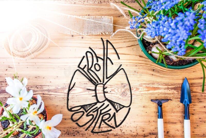 晴朗的春天花,书法Frohe Ostern意味复活节快乐 向量例证
