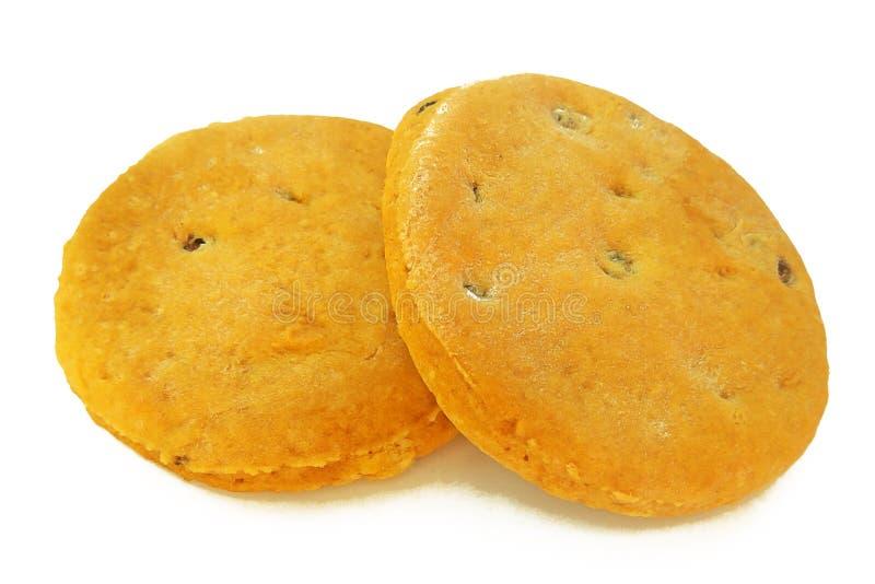 新近地烘烤了自创饼干用在白色背景隔绝的葡萄干 库存图片