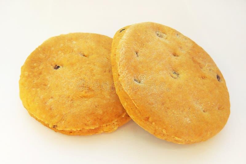 新近地被烘烤的自创饼干用在白色背景的葡萄干 库存照片