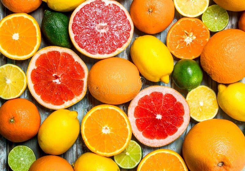 新鲜的明亮的柑橘 免版税库存图片