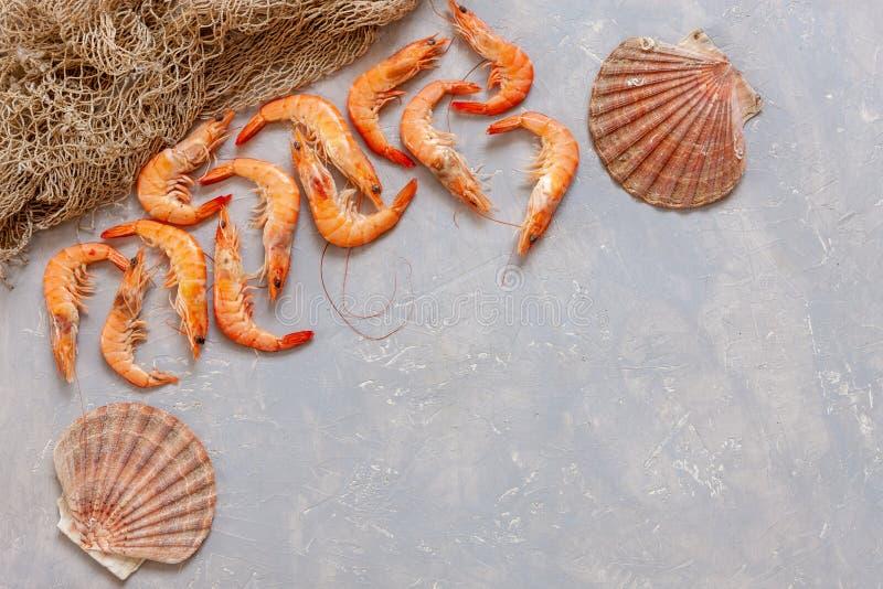 新鲜的虾、扇贝壳和渔网 顶视图,在轻混凝土背景关闭  库存照片