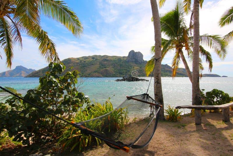 放松在一个吊床在一个热带海岛,斐济 库存照片