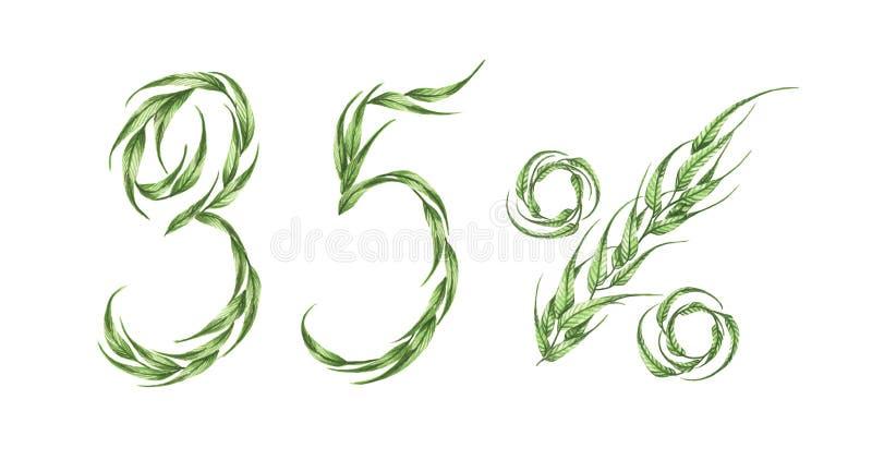35%文本,从绿色叶子的百分之三十五 额嘴装饰飞行例证图象其纸部分燕子水彩 皇族释放例证
