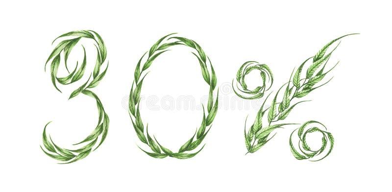 30%文本,从绿色叶子的百分之三十 额嘴装饰飞行例证图象其纸部分燕子水彩 皇族释放例证