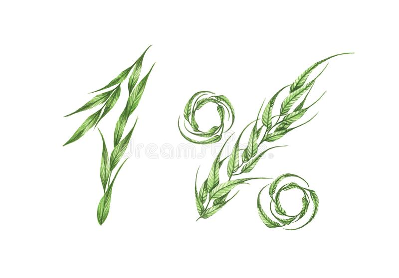 1%文本,从绿色叶子的百分之一 额嘴装饰飞行例证图象其纸部分燕子水彩 库存例证