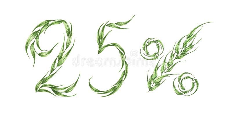 25%文本,从绿色叶子的百分之二十五 额嘴装饰飞行例证图象其纸部分燕子水彩 皇族释放例证