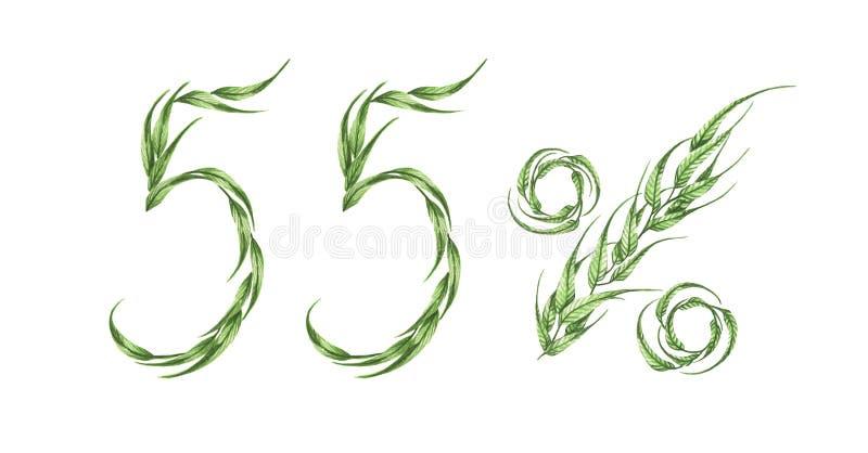 55%文本,从绿色叶子的百分之五十五 额嘴装饰飞行例证图象其纸部分燕子水彩 皇族释放例证