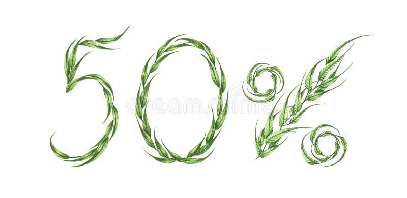 50%文本,从绿色叶子的百分之五十 额嘴装饰飞行例证图象其纸部分燕子水彩 库存例证