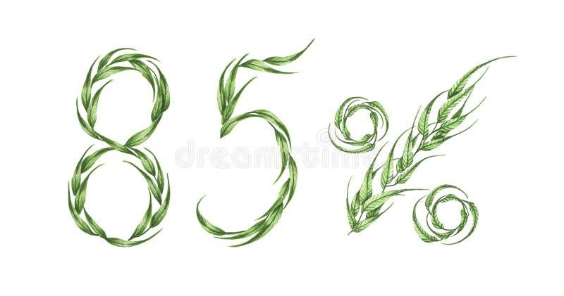 85%文本,从绿色叶子的百分之八十五 额嘴装饰飞行例证图象其纸部分燕子水彩 皇族释放例证